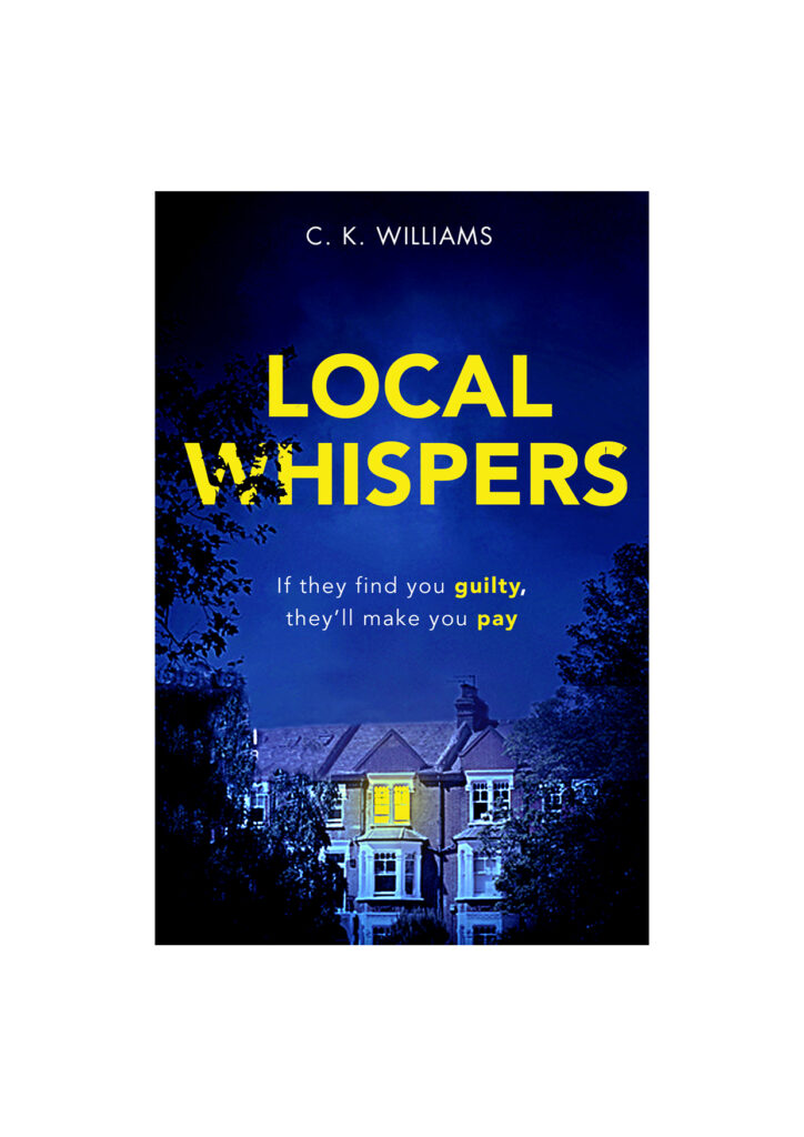 a cover, blue and yellow, depicting a house at night where the lights are on in the upper window.